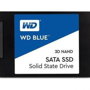 tern Digital Blue M.2 500GB SATA III SSD [WDS500G2B0A]
