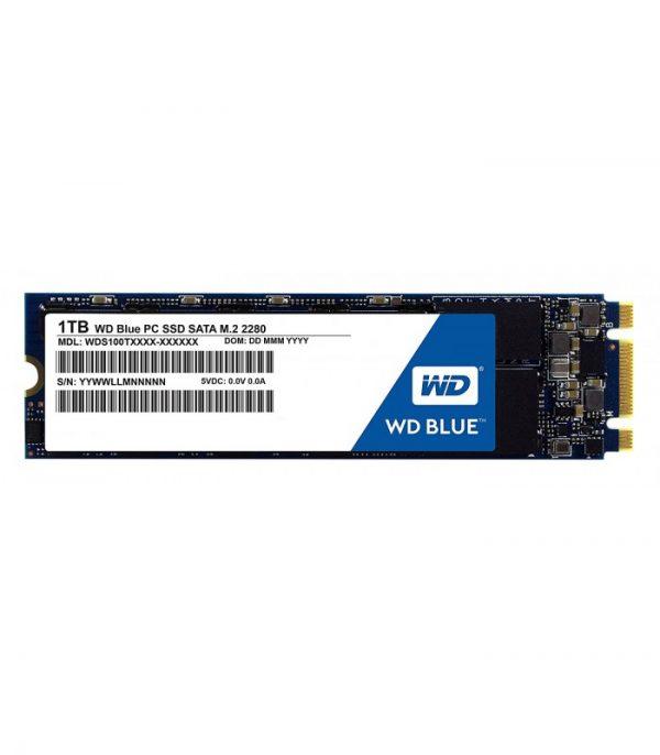 Western Digital Blue M.2 1TB SATA III SSD [WDS100T2B0A]